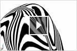 Учебный видеокурс по AutoCAD 2013: анализ поверхностей